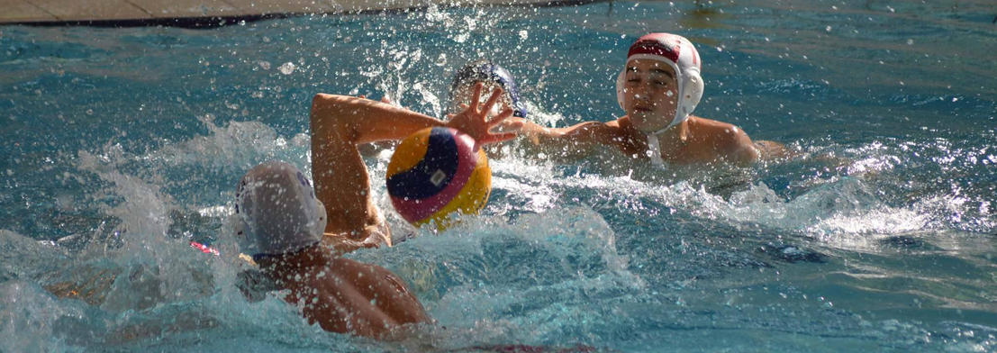 Water Polo CNF Fougères compétition.JPG